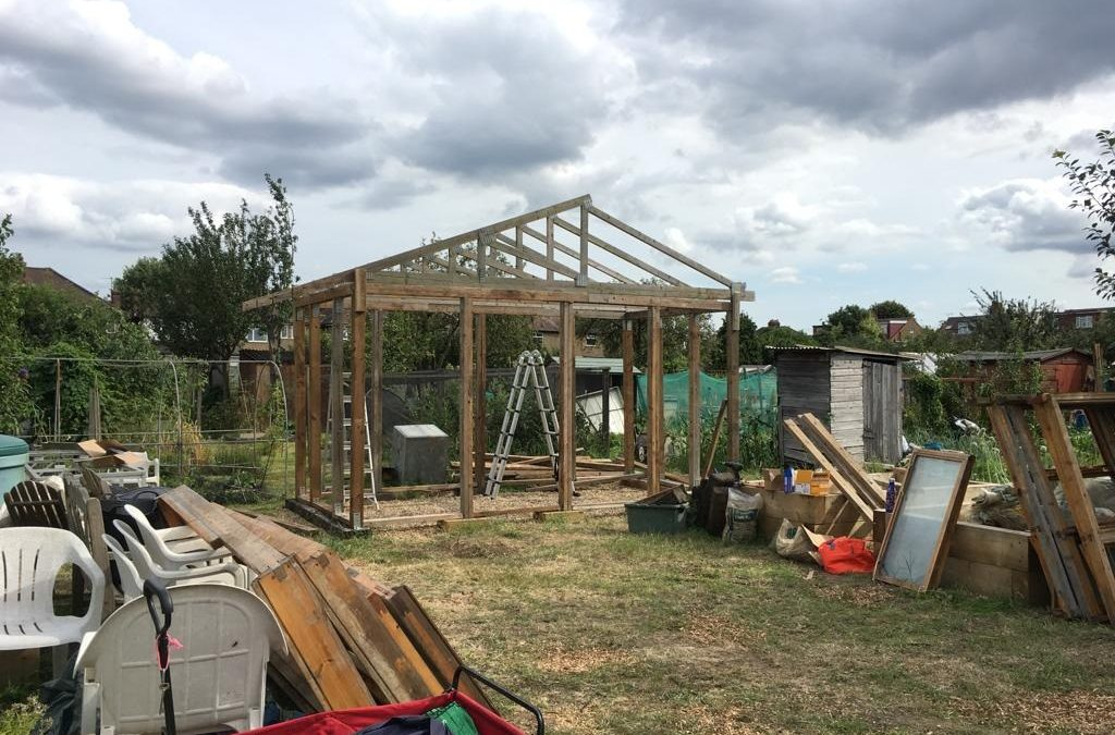 Community Greenhouse Update – 20th July