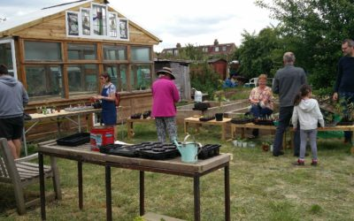 Plant sale/swap day – a great success!